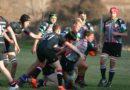 Harlequin Youth Rugby v Říčanech